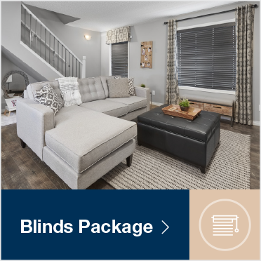 blinds_package